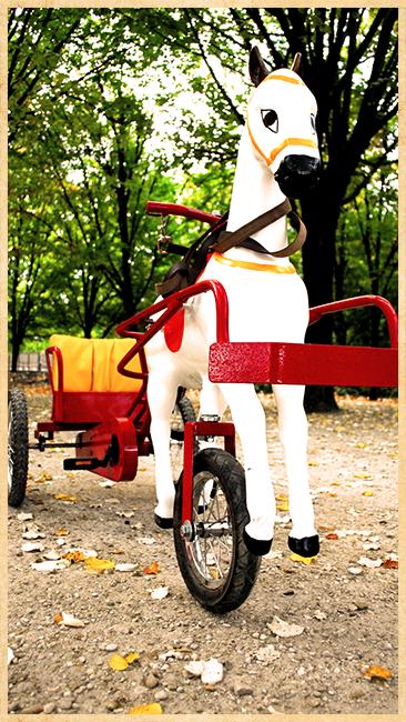 """Résultat de recherche d'images pour """"cheval à pédale touquet"""""""